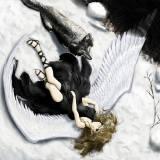 Ангел и волк