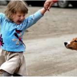 Боязнь собак